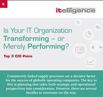 Infographic: Top 3 CIO Pains
